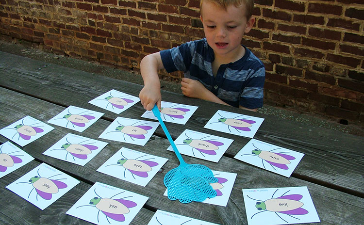 Sight Words Fly Swat