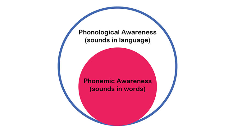 phonological phonemic